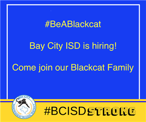 photo of BCISD is hiring graphic