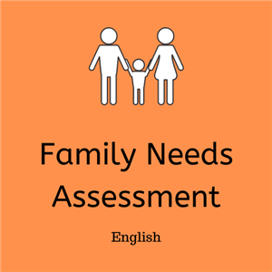 graphic family needs assessment Engliah